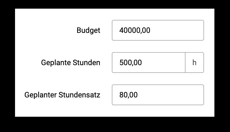 Projektbudget Planung
